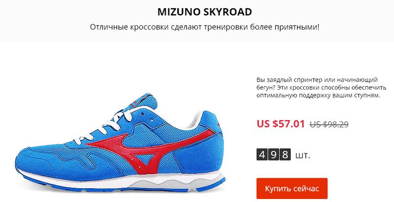 кроссовки Mizuno SKYROAD